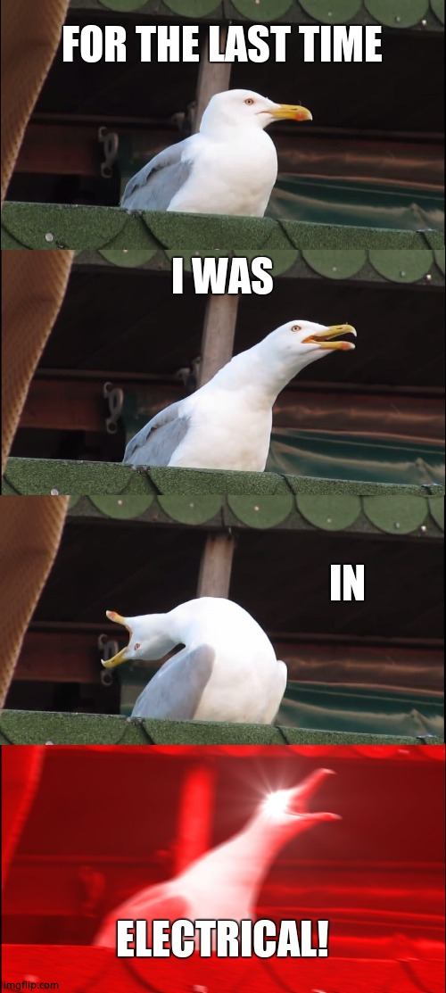 Inhaling Seagull |  FOR THE LAST TIME; I WAS; IN; ELECTRICAL! | image tagged in memes,inhaling seagull | made w/ Imgflip meme maker