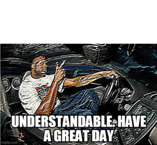 UNDERSTANDABLE, HAVE A GREAT DAY | image tagged in understandable have a great day | made w/ Imgflip meme maker