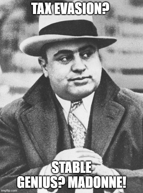 Tax Evasion? |  TAX EVASION? STABLE GENIUS? MADONNE! | image tagged in al capone you don't say | made w/ Imgflip meme maker
