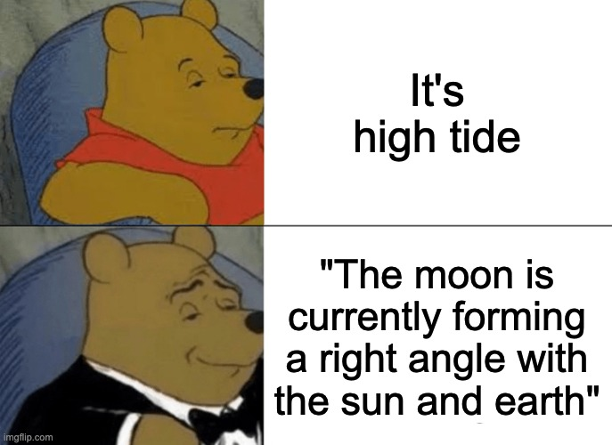 "Tuxedo Winnie The Pooh |  It's high tide; ""The moon is currently forming a right angle with the sun and earth"" 