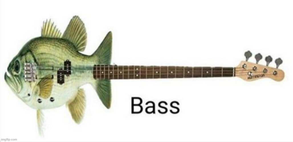 Bass bass repost | image tagged in bass,guitar,fish | made w/ Imgflip meme maker