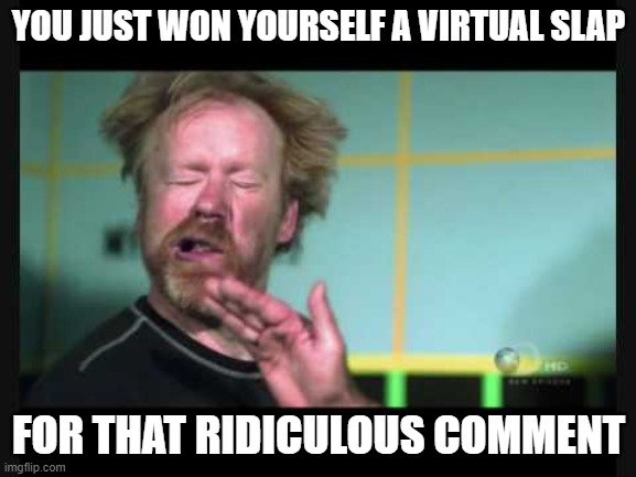 meme war ammo |  YOU JUST WON YOURSELF A VIRTUAL SLAP; FOR THAT RIDICULOUS COMMENT | image tagged in slap,funny memes,meme war,owned | made w/ Imgflip meme maker