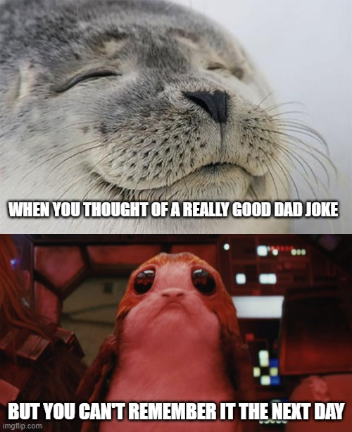 It never got the chance to live! |  WHEN YOU THOUGHT OF A REALLY GOOD DAD JOKE; BUT YOU CAN'T REMEMBER IT THE NEXT DAY | image tagged in memes,satisfied seal,porg,loss,dad joke | made w/ Imgflip meme maker