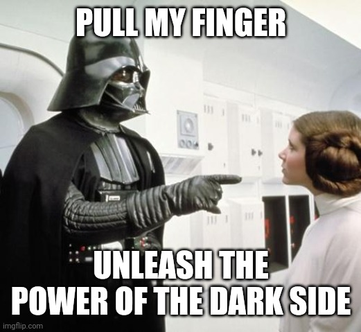 PULL MY FINGER UNLEASH THE POWER OF THE DARK SIDE | image tagged in pull my finger | made w/ Imgflip meme maker