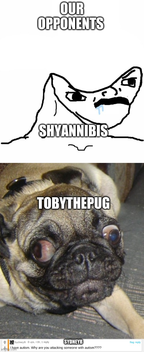 Making this meme was an awful choice |  OUR OPPONENTS; SHYANNIBIS; TOBYTHEPUG; SYDNEYB | image tagged in ugly pug,angry brainlet,sydneyb | made w/ Imgflip meme maker