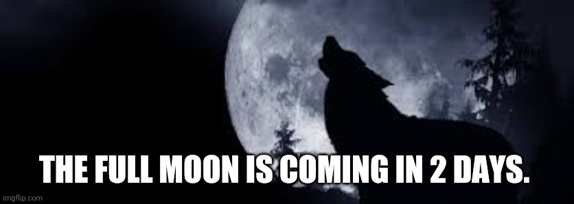THE FULL MOON IS COMING IN 2 DAYS. | image tagged in i searched up when the next full moon is,i got this | made w/ Imgflip meme maker