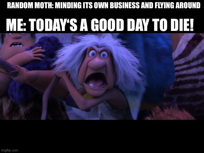 Clap clap funny new format |  RANDOM MOTH: MINDING ITS OWN BUSINESS AND FLYING AROUND; ME: TODAY'S A GOOD DAY TO DIE! | image tagged in croods,grandma | made w/ Imgflip meme maker