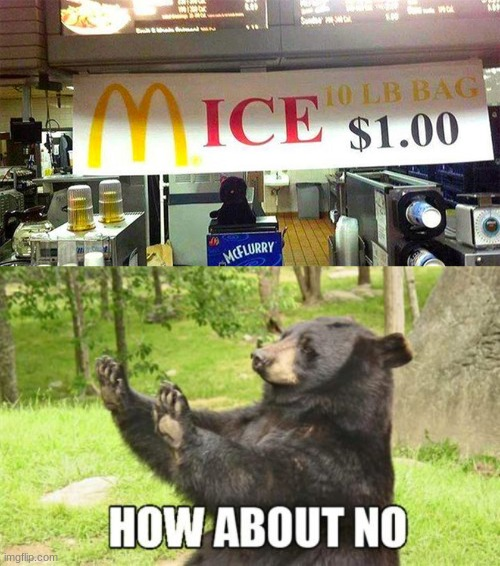 10 pound bag of mice | image tagged in memes,how about no bear | made w/ Imgflip meme maker