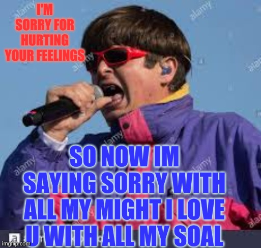 Sorru |  I'M SORRY FOR HURTING YOUR FEELINGS; SO NOW IM SAYING SORRY WITH ALL MY MIGHT I LOVE U WITH ALL MY SOAL | image tagged in memes | made w/ Imgflip meme maker