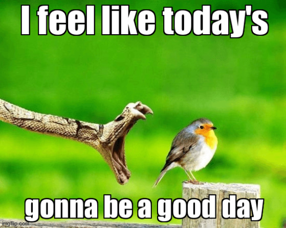 image tagged in good day | made w/ Imgflip meme maker