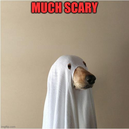 Ghost Doge |  MUCH SCARY | image tagged in ghost doge | made w/ Imgflip meme maker