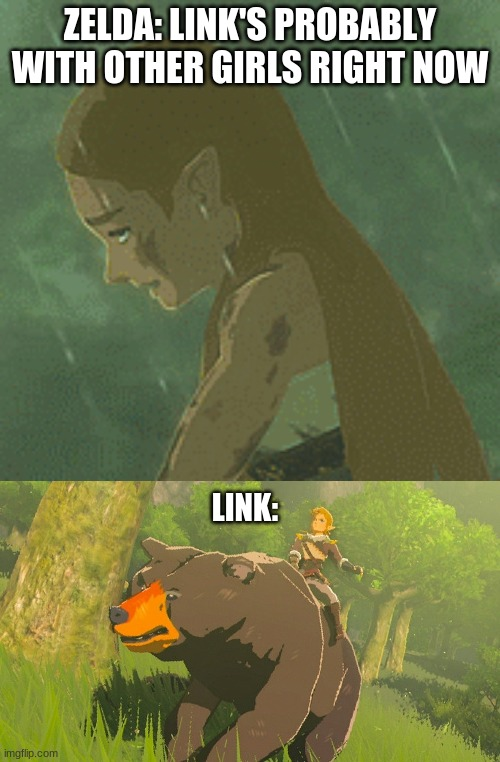ZELDA: LINK'S PROBABLY WITH OTHER GIRLS RIGHT NOW; LINK: | image tagged in the legend of zelda breath of the wild | made w/ Imgflip meme maker