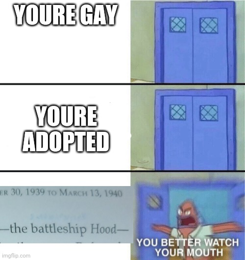 *INHALES* |  YOURE GAY; YOURE ADOPTED | image tagged in you better watch your mouth,historical meme,history,funny | made w/ Imgflip meme maker