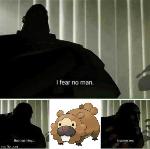 i dont blame him. | image tagged in i fear no man,bidoof,pokemon | made w/ Imgflip meme maker