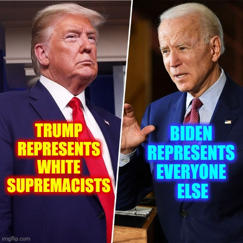 Predictable |  TRUMP REPRESENTS WHITE SUPREMACISTS; BIDEN  REPRESENTS  EVERYONE  ELSE | image tagged in trump biden,memes,trump unfit unqualified dangerous,liar in chief,presidential debate,trump is a moron | made w/ Imgflip meme maker