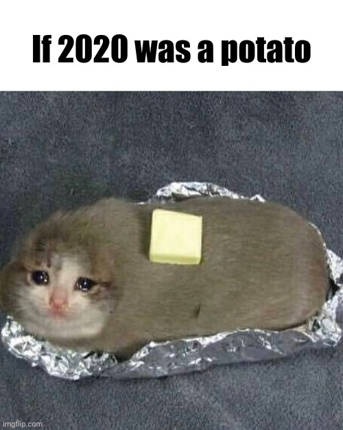 If 2020 was a potato |  If 2020 was a potato | image tagged in potato,cursed image,memes,meme,2020 sucks,2020 | made w/ Imgflip meme maker