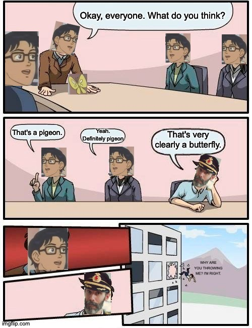 Is This a Boardroom Meeting? |  Okay, everyone. What do you think? That's a pigeon. Yeah. Definitely pigeon; That's very clearly a butterfly. WHY ARE YOU THROWING ME? I'M RIGHT. | image tagged in memes,boardroom meeting suggestion,is this a pigeon,captain obvious,why are you booing me i'm right,too many tags | made w/ Imgflip meme maker