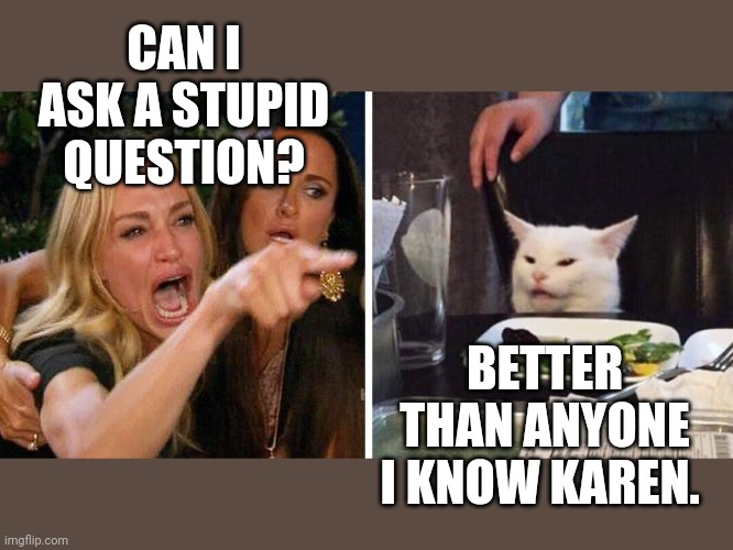 Smudge the cat |  CAN I ASK A STUPID QUESTION? BETTER THAN ANYONE I KNOW KAREN. | image tagged in smudge the cat | made w/ Imgflip meme maker