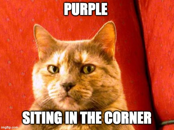 Suspicious Cat Meme | PURPLE SITING IN THE CORNER | image tagged in memes,suspicious cat | made w/ Imgflip meme maker