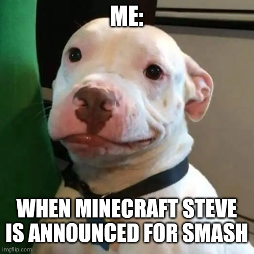 I mean I guess its great |  ME:; WHEN MINECRAFT STEVE IS ANNOUNCED FOR SMASH | image tagged in im like mehe,dog,minecraft steve,but why tho,super smash bros | made w/ Imgflip meme maker