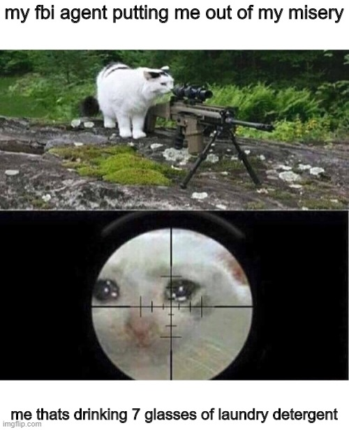 Sniper cat |  my fbi agent putting me out of my misery; me thats drinking 7 glasses of laundry detergent | image tagged in sniper cat | made w/ Imgflip meme maker