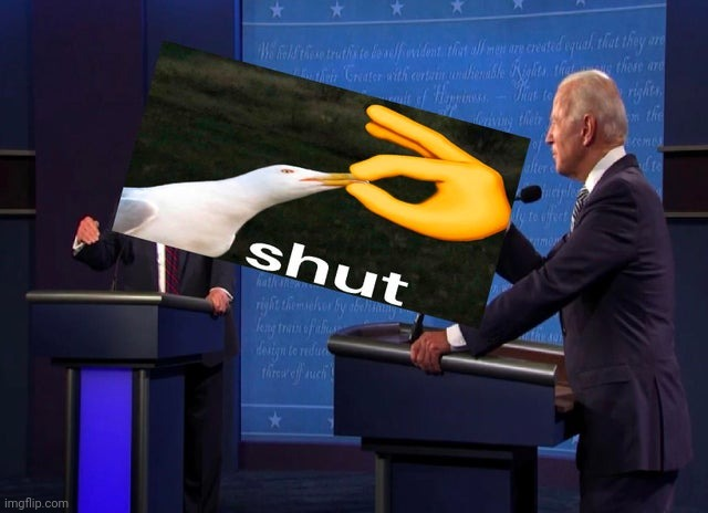 This fits perfectly | image tagged in trump,biden,memes,gifs,funny | made w/ Imgflip meme maker