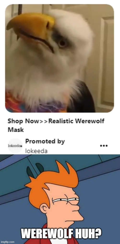 Interesting werewolf |  WEREWOLF HUH? | image tagged in memes,futurama fry | made w/ Imgflip meme maker