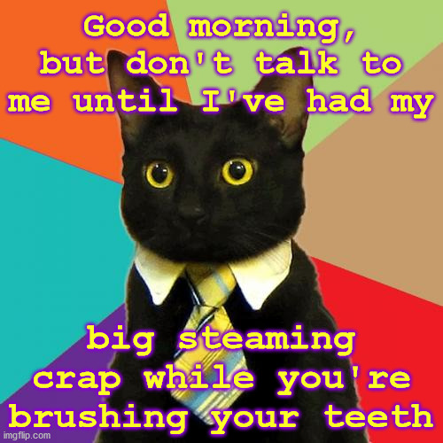 Morning Rituals |  Good morning, but don't talk to me until I've had my; big steaming crap while you're brushing your teeth | image tagged in memes,business cat,boss,good guy boss,cats | made w/ Imgflip meme maker