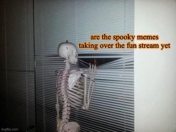 What a nice view |  are the spooky memes taking over the fun stream yet | image tagged in spooktober,halloween,memes,funny,fun stream,skeleton | made w/ Imgflip meme maker