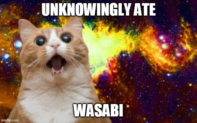 Food shock |  UNKNOWINGLY ATE; WASABI | image tagged in mind blown cat,spicy,shocked face | made w/ Imgflip meme maker
