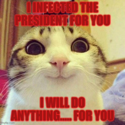 Smiling Cat |  I INFECTED THE PRESIDENT FOR YOU; I WILL DO ANYTHING..... FOR YOU | image tagged in memes,smiling cat | made w/ Imgflip meme maker