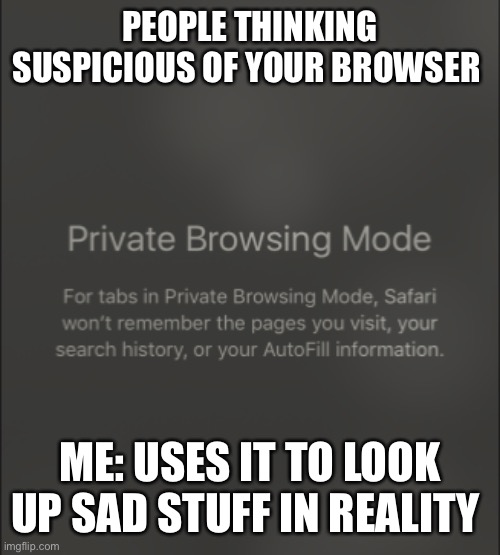 Private browsing |  PEOPLE THINKING SUSPICIOUS OF YOUR BROWSER; ME: USES IT TO LOOK UP SAD STUFF IN REALITY | image tagged in private browsing,memes,dark humor,sarcasm,browser history | made w/ Imgflip meme maker