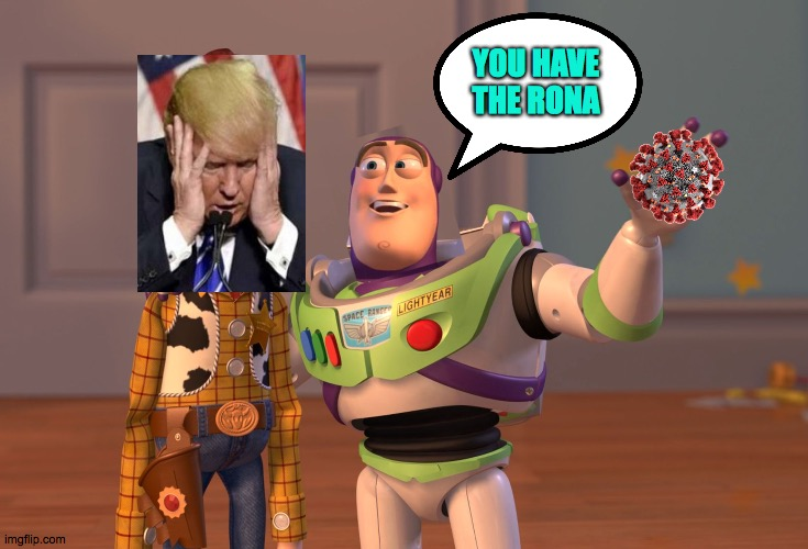 The Rona, Sir. |  YOU HAVE THE RONA | image tagged in memes,x x everywhere,sir,lol,covid,trump | made w/ Imgflip meme maker