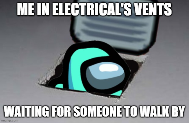 Just Chilling... |  ME IN ELECTRICAL'S VENTS; WAITING FOR SOMEONE TO WALK BY | image tagged in ceiling cat,memes | made w/ Imgflip meme maker