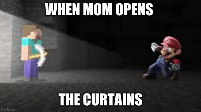 WHEN MOM OPENS; THE CURTAINS | image tagged in minecraft,minecraft steve,super smash bros | made w/ Imgflip meme maker