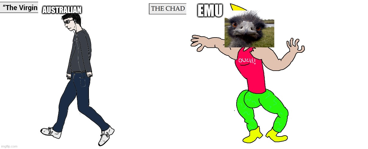 Virgin and Chad |  AUSTRALIAN; EMU | image tagged in virgin and chad | made w/ Imgflip meme maker