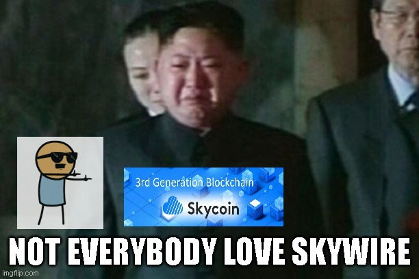 Kim Jong Un Sad |  NOT EVERYBODY LOVE SKYWIRE | image tagged in memes,kim jong un sad | made w/ Imgflip meme maker