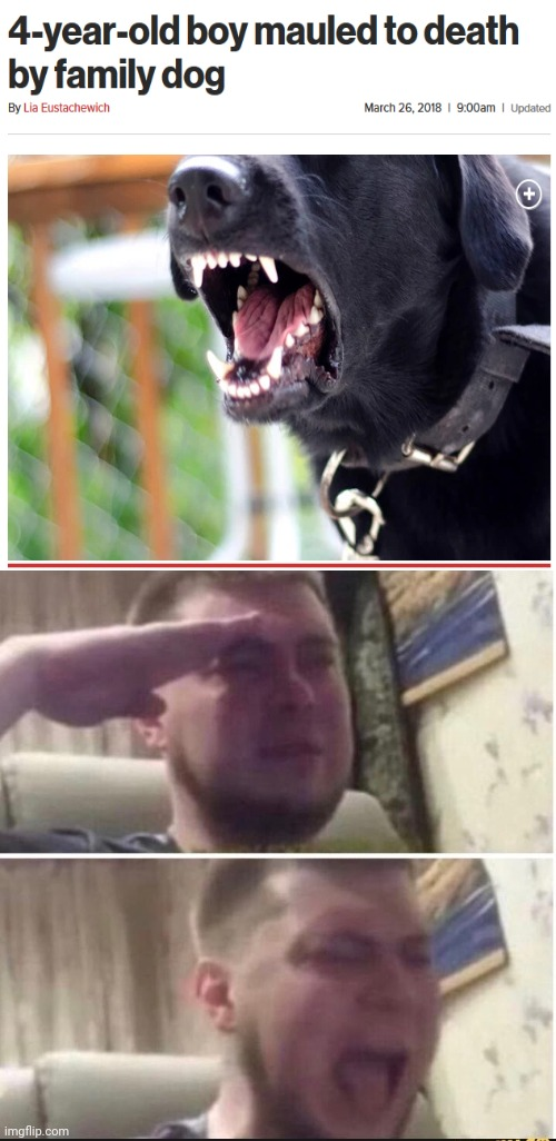 This is so upsetting. | image tagged in crying salute,funny,memes,meme,dog,dogs | made w/ Imgflip meme maker