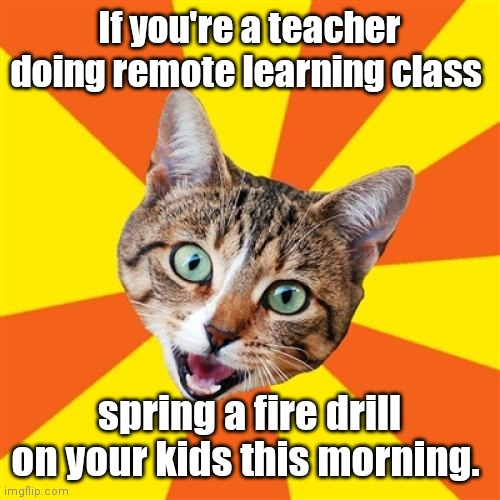 Please don't. |  If you're a teacher doing remote learning class; spring a fire drill on your kids this morning. | image tagged in memes,bad advice cat,mildlyfunny | made w/ Imgflip meme maker