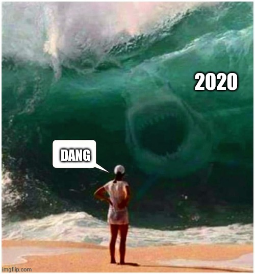 bring it on... |  2020; DANG | image tagged in memes,2020 sucks,covid-19,shark,real life,funny memes | made w/ Imgflip meme maker