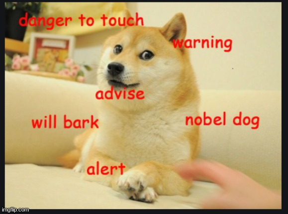 BARK DOGE | image tagged in google images | made w/ Imgflip meme maker