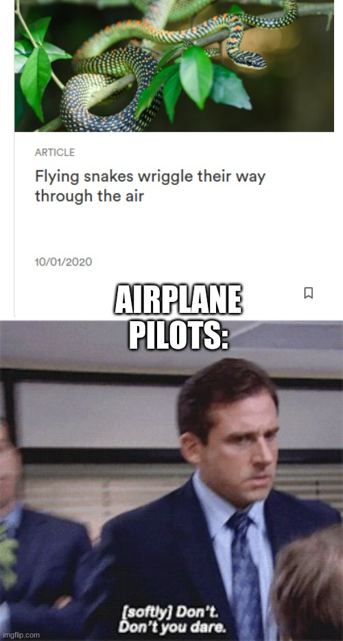 help get this to front page |  AIRPLANE PILOTS: | image tagged in softly don't don't you dare,airplane,funny memes,lol | made w/ Imgflip meme maker