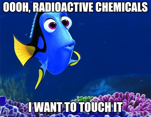 Dory |  OOOH, RADIOACTIVE CHEMICALS; I WANT TO TOUCH IT | image tagged in dory | made w/ Imgflip meme maker