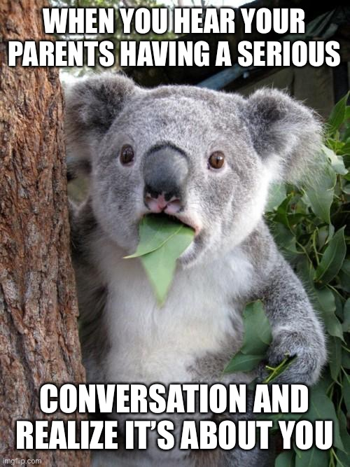 Surprised Koala |  WHEN YOU HEAR YOUR PARENTS HAVING A SERIOUS; CONVERSATION AND REALIZE IT'S ABOUT YOU | image tagged in memes,surprised koala | made w/ Imgflip meme maker