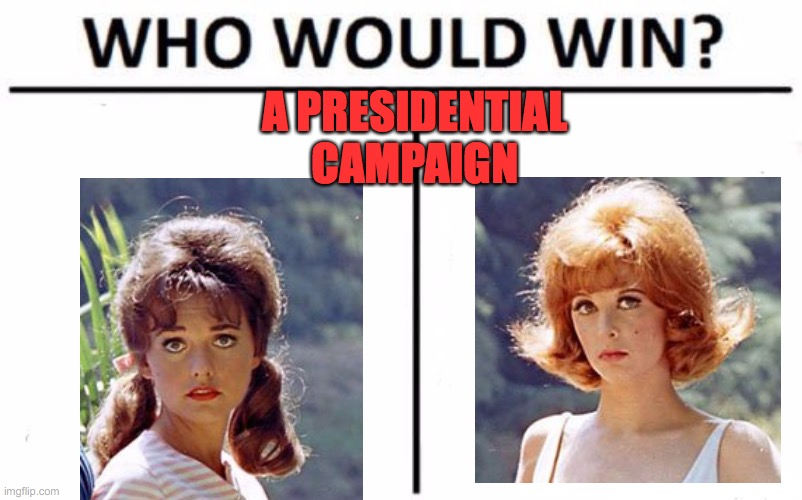 The classic match up |  A PRESIDENTIAL CAMPAIGN | image tagged in memes,who would win,president,ginger,maryann,funnin | made w/ Imgflip meme maker