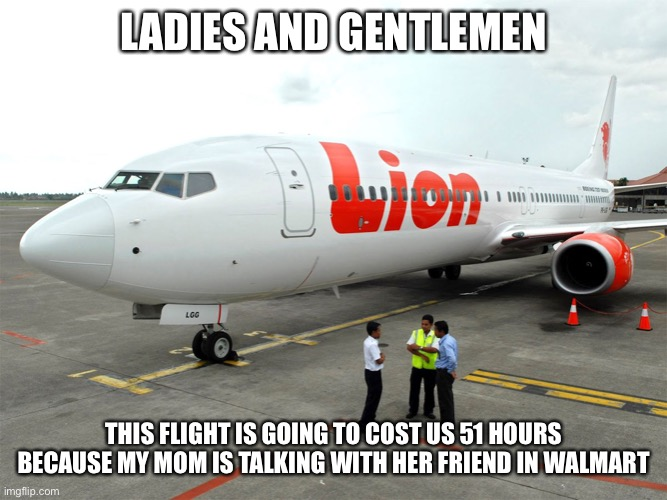 Home is delayed |  LADIES AND GENTLEMEN; THIS FLIGHT IS GOING TO COST US 51 HOURS BECAUSE MY MOM IS TALKING WITH HER FRIEND IN WALMART | image tagged in aviation,memes,flight,mom,this little manuever is gonna cost us 51 years | made w/ Imgflip meme maker