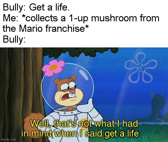 When you're told to get a life |  Bully: Get a life. Me: *collects a 1-up mushroom from  the Mario franchise* Bully:; get a life | image tagged in not what sandy had in mind,memes,mario,get a life | made w/ Imgflip meme maker