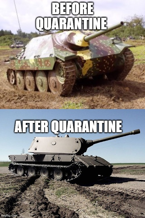 lol |  BEFORE QUARANTINE; AFTER QUARANTINE | image tagged in historical meme | made w/ Imgflip meme maker