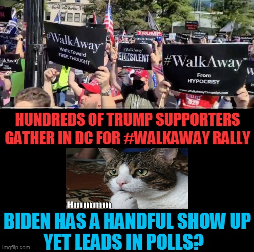 The Not So Silent Majority? |  HUNDREDS OF TRUMP SUPPORTERS GATHER IN DC FOR #WALKAWAY RALLY; BIDEN HAS A HANDFUL SHOW UP YET LEADS IN POLLS? | image tagged in politics,political meme,republicans,donald trump,americans,democrat party | made w/ Imgflip meme maker