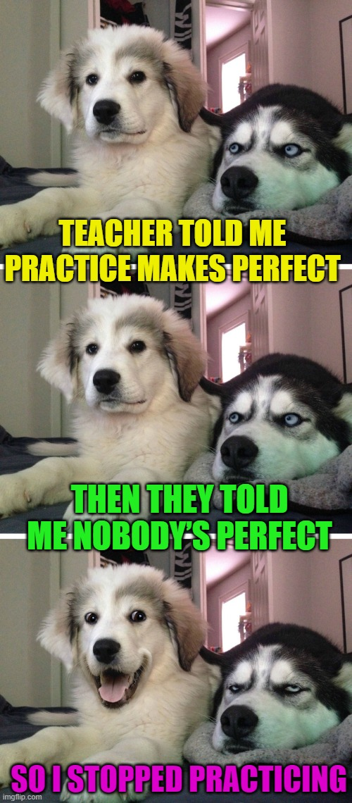Makes sense to me |  TEACHER TOLD ME PRACTICE MAKES PERFECT; THEN THEY TOLD ME NOBODY'S PERFECT; SO I STOPPED PRACTICING | image tagged in bad pun dogs,funny,practice,perfect,perfection,cliche | made w/ Imgflip meme maker